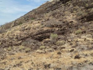 Hill West of Marsabit