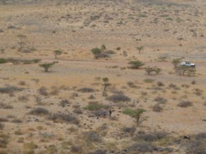 Overview West of Marsabit